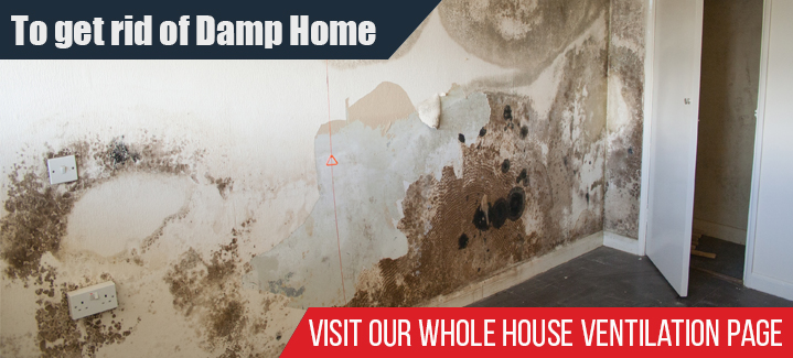 To Get Rid Of Damp Home