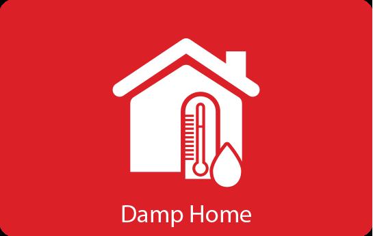 Damp Home