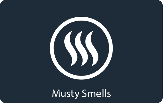 Musty Smells