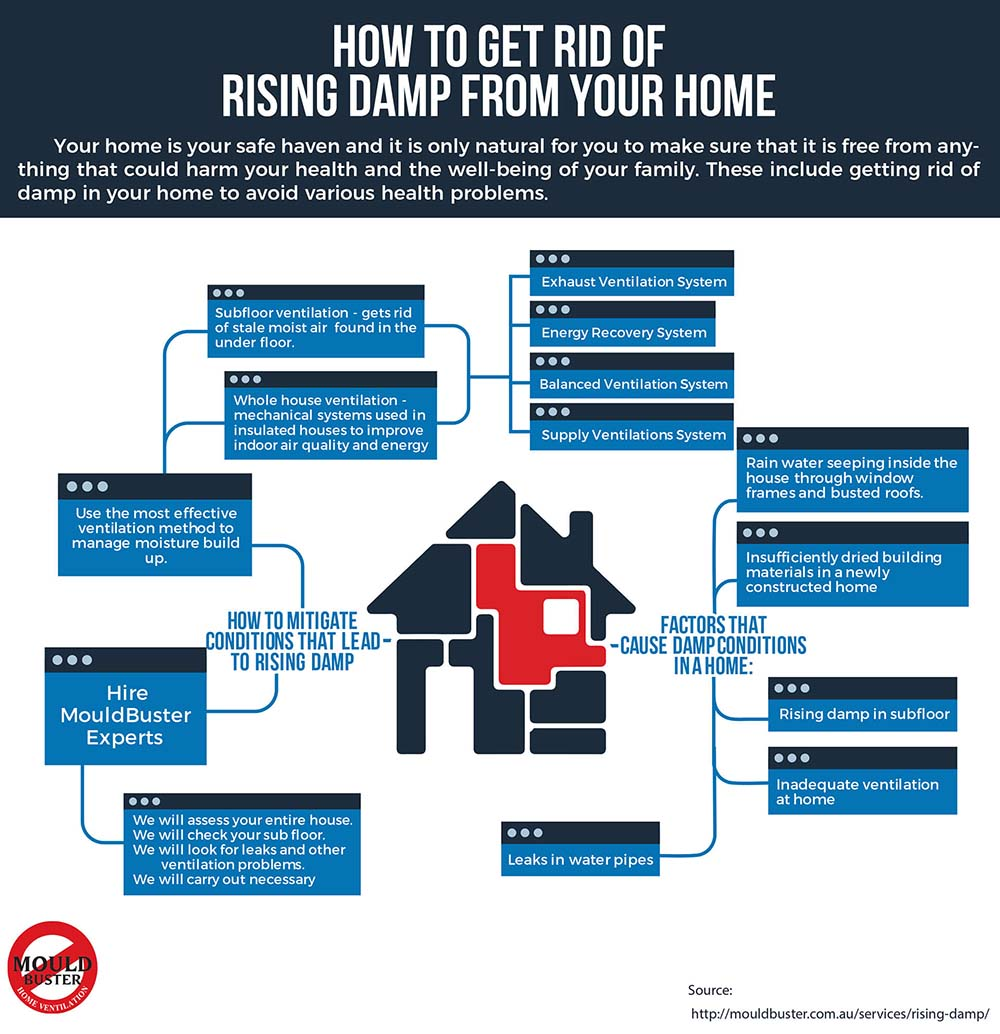 Infographic about ways to get rid of Rising Damp in your home.